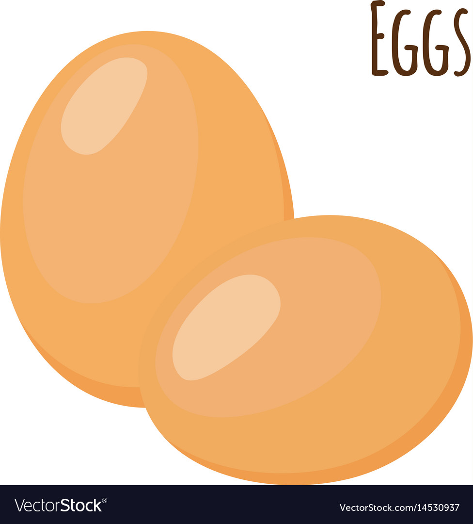 Eggs in flat style healthy protein nutrition