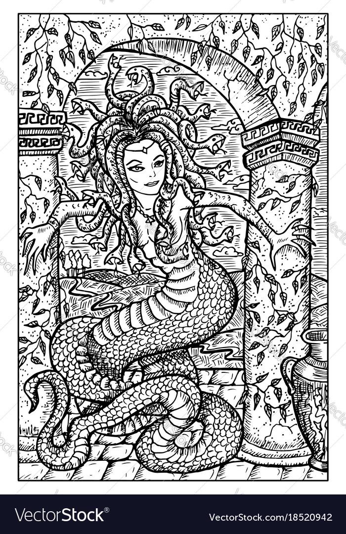 Gorgon engraved fantasy vector image