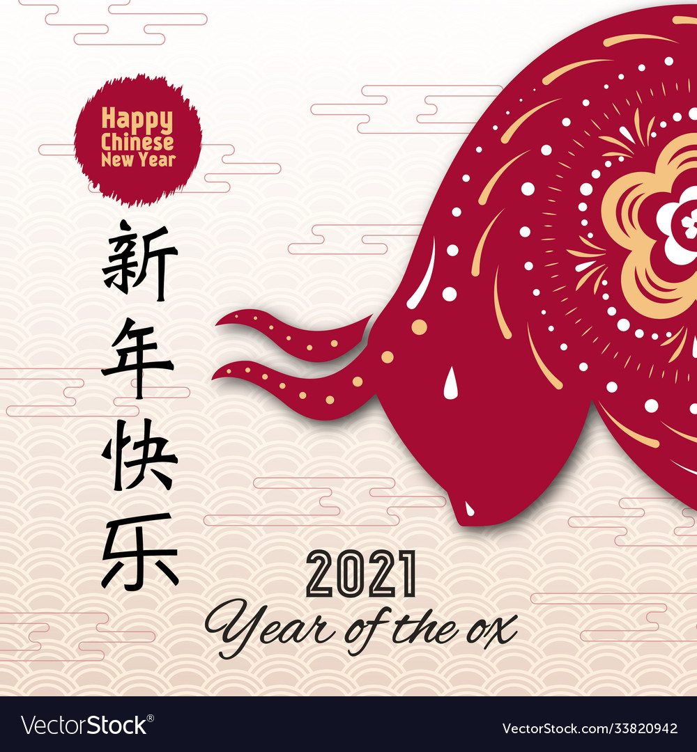 Happy chinese new year 2021 greeting card with ox