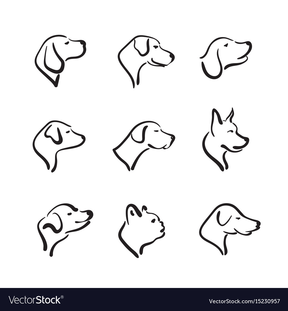 Group of hand drawn dog head on white background