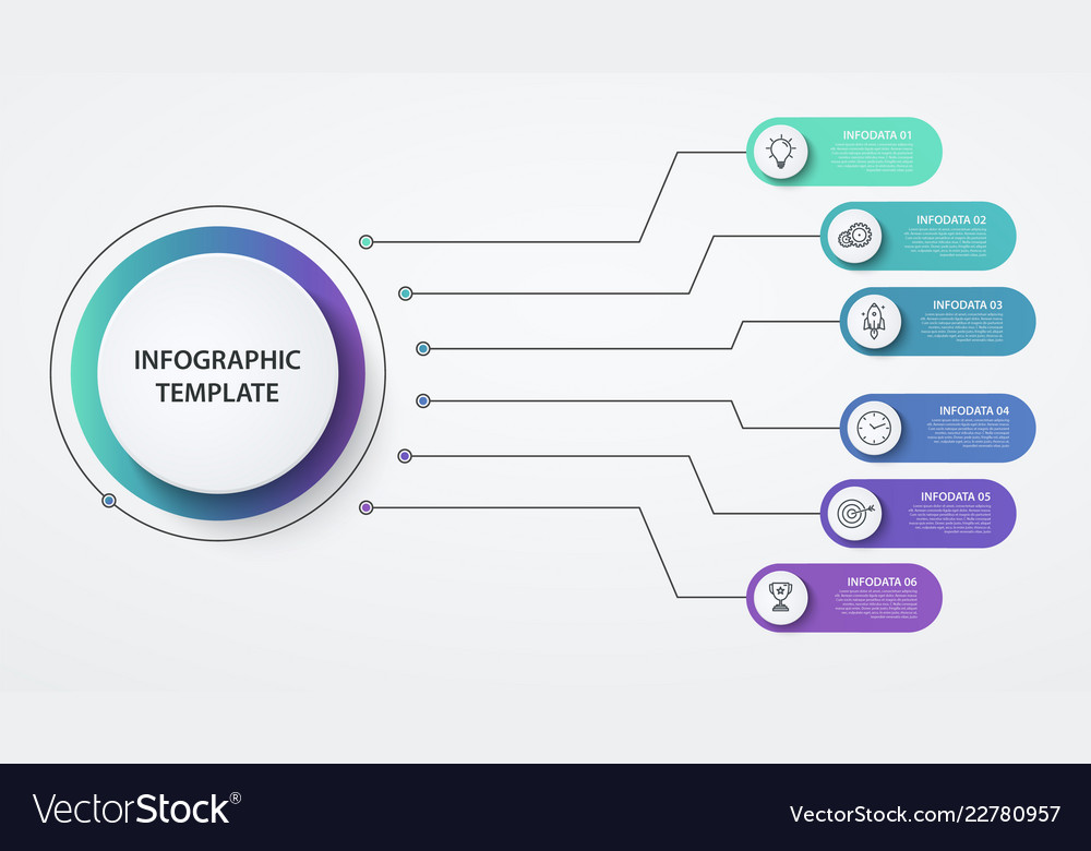 Infographics circles 6 options or steps business