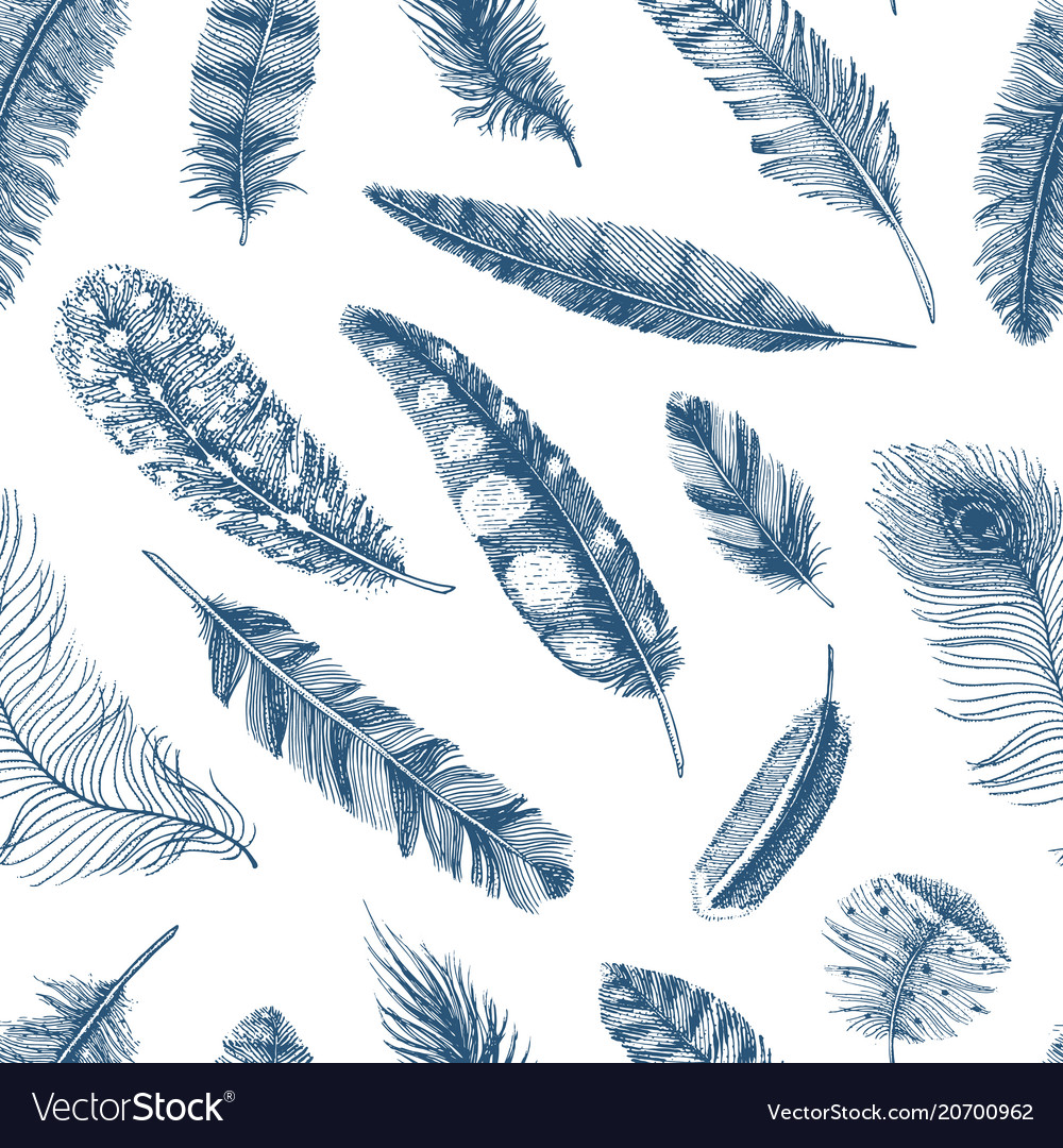 Seamless pattern rustic realistic feathers of