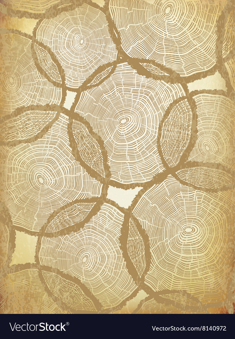 Aged Background with Tree Rings Pattern vector image