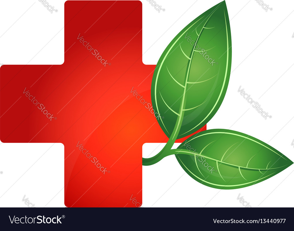 Red cross medical and green leaf