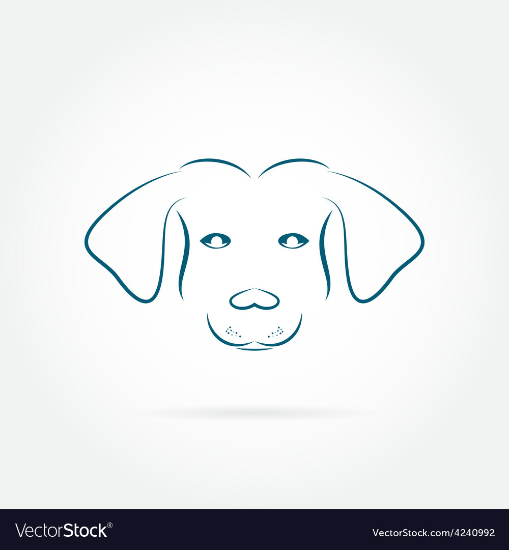 Image of an dog vector image