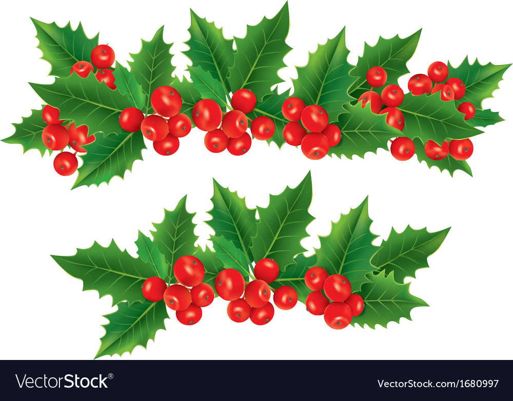 christmas garland of holly berries royalty free vector image