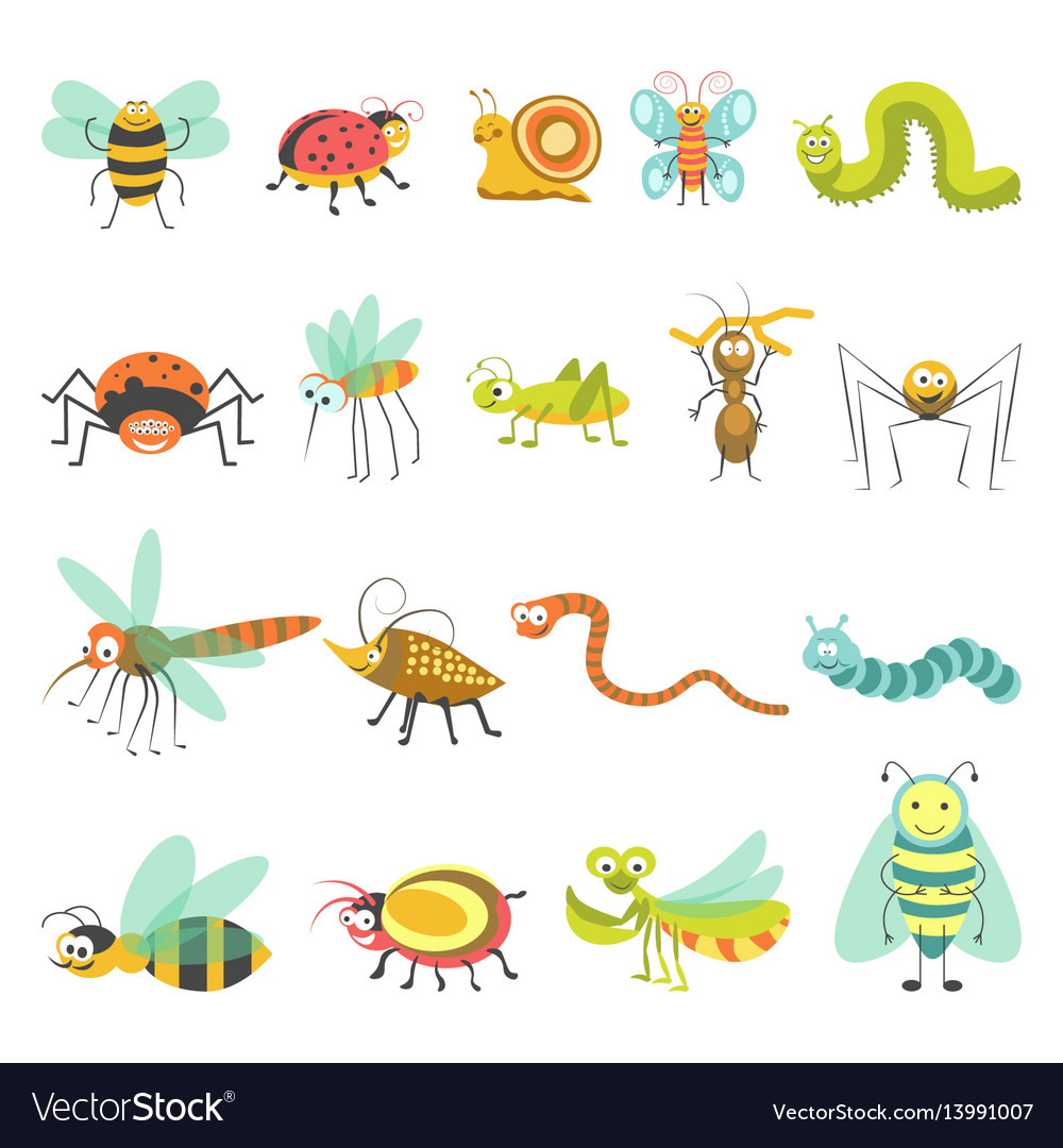 Funny cartoon insects and bugs isolated