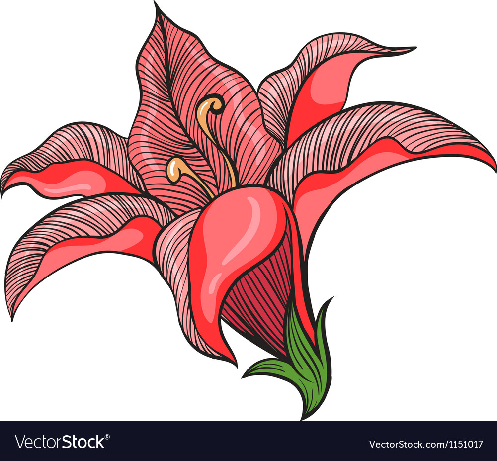 A pink flower