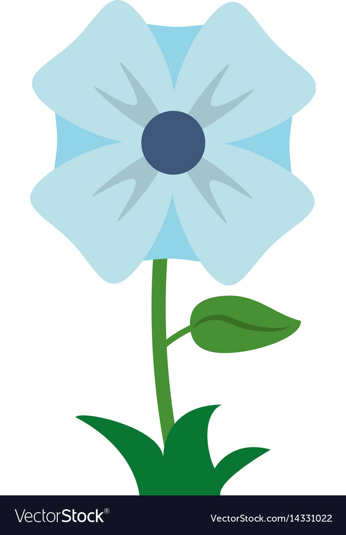 Flower romantic natural icon vector image