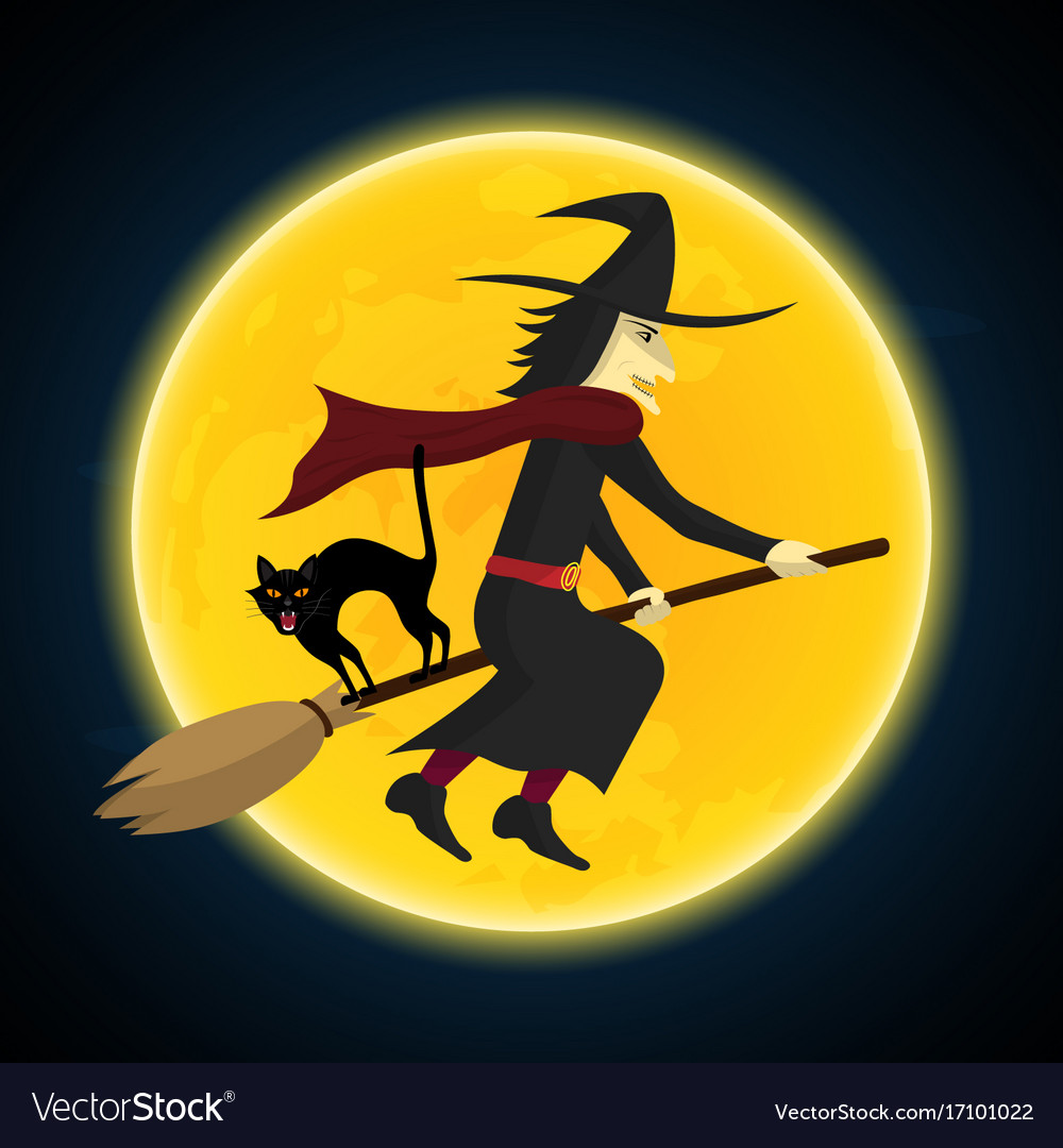 Halloween witch flying on broom growl black cat vector image