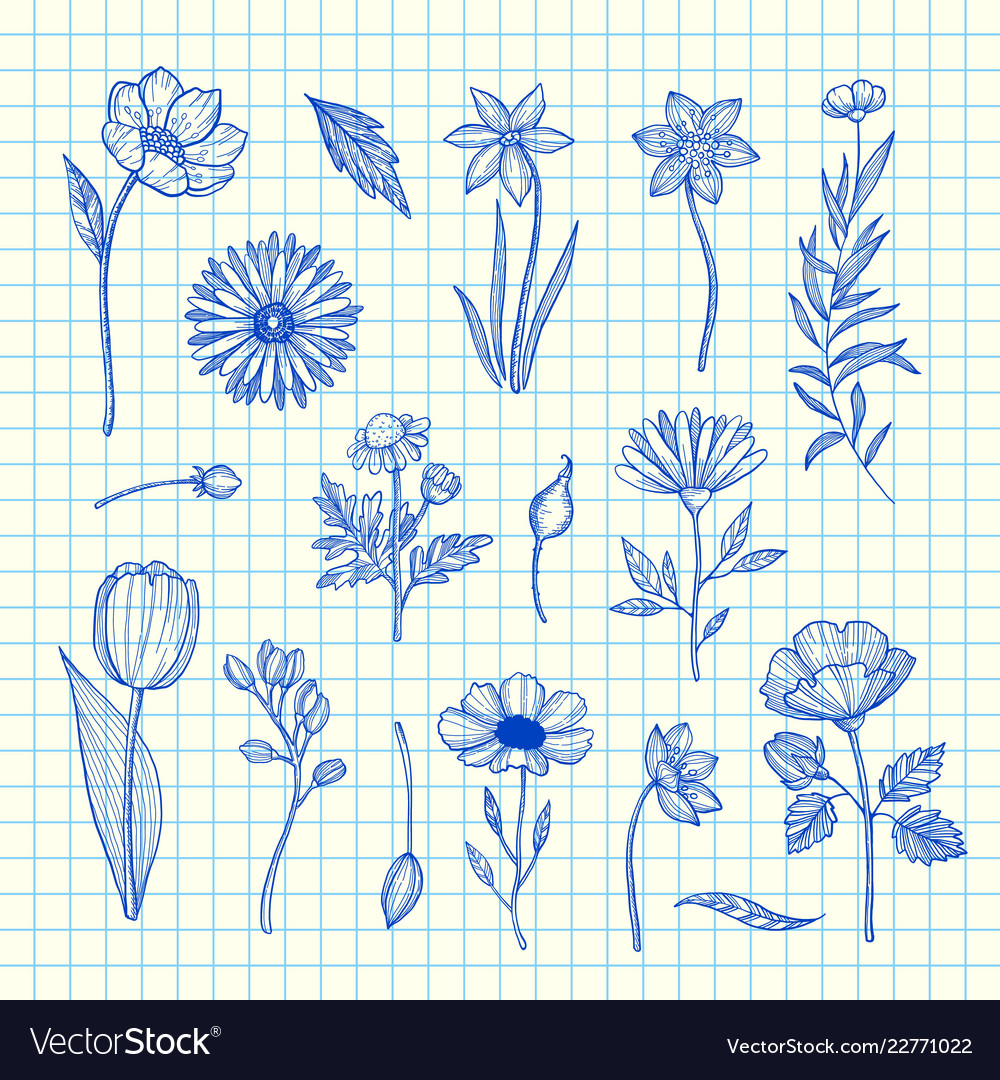 Hand drawn flowers set on blue cell sheet