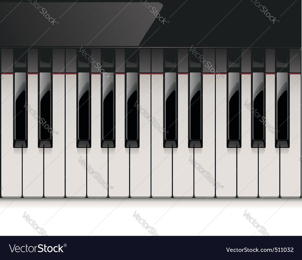 Vector detailed piano keyboard