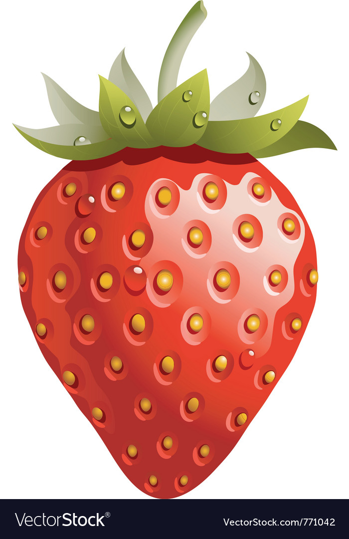 strawberry royalty free vector image vectorstock rh vectorstock com strawberry vector free strawberry vector free