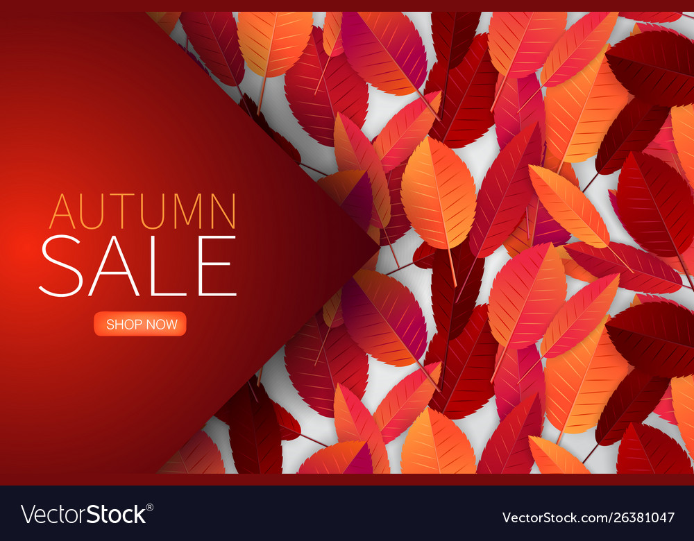 Autumn Leaves Background Wallpaper