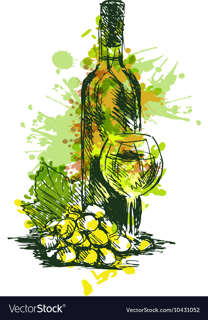 Colored Hand drawing Wine Still Life