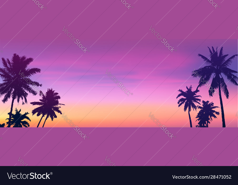 Dark palm trees silhouettes on sunset or sunrise