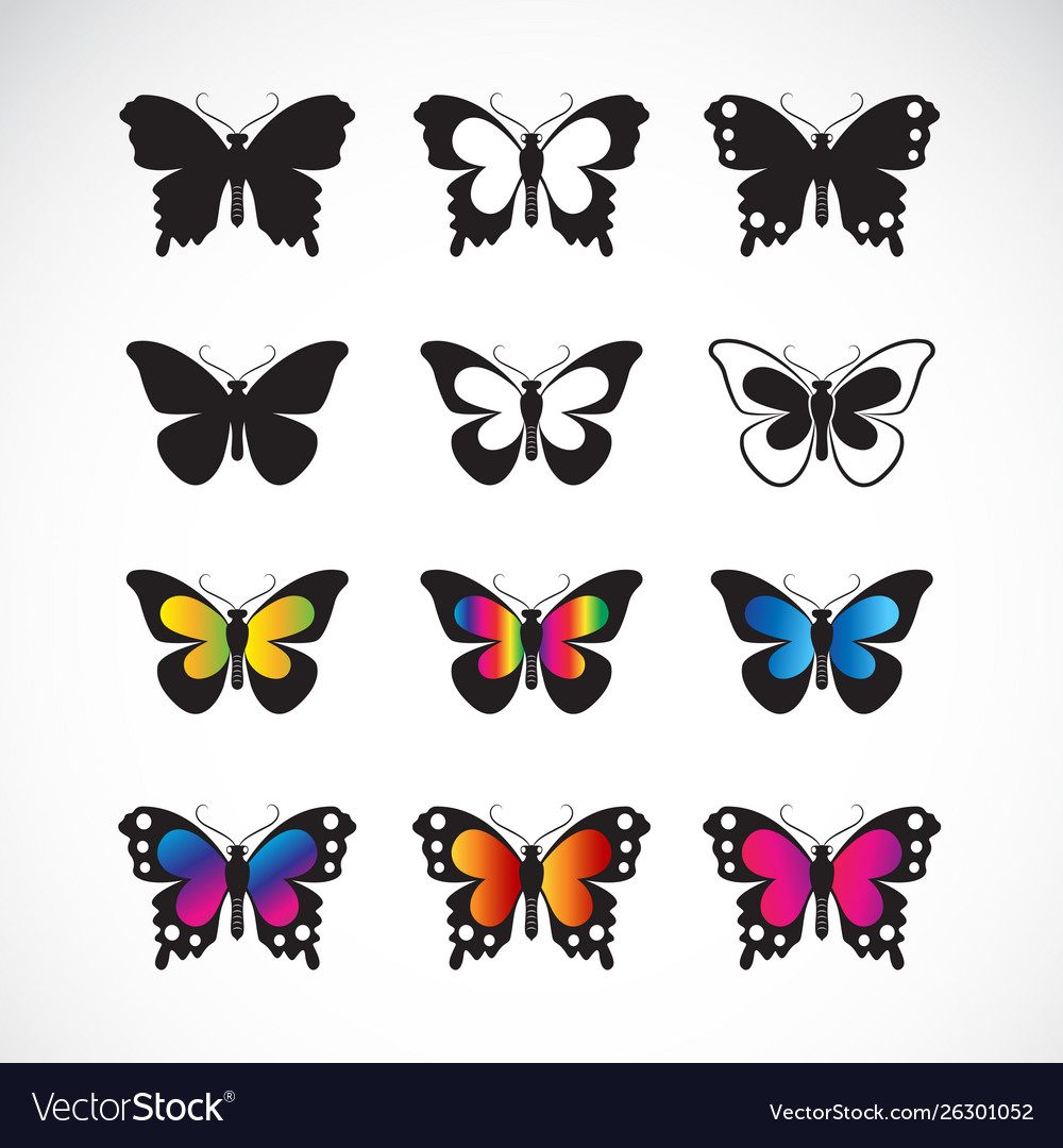Group butterflies design on white background