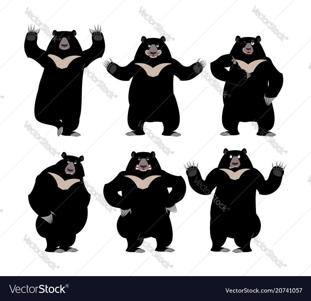 Himalayan bear set emotion and posture cheerful vector image