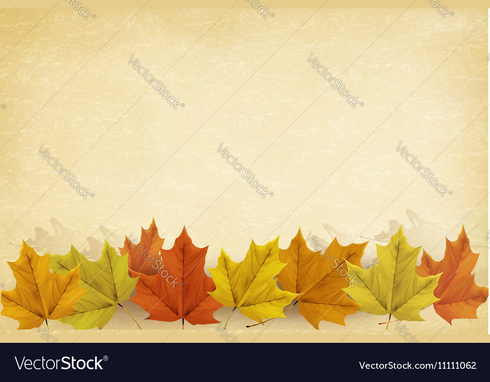 Autumn background with leaves and old paper