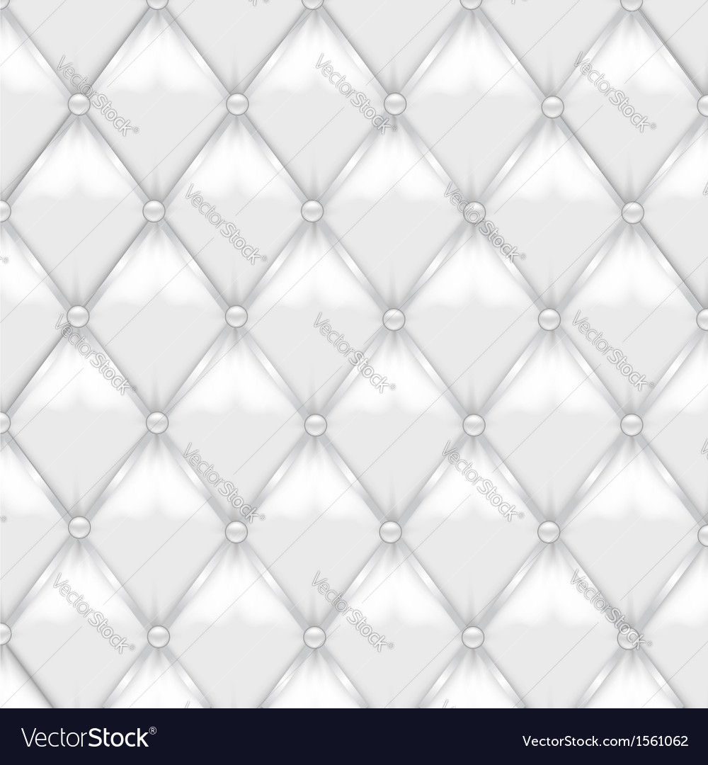 White Leather Upholstery vector image