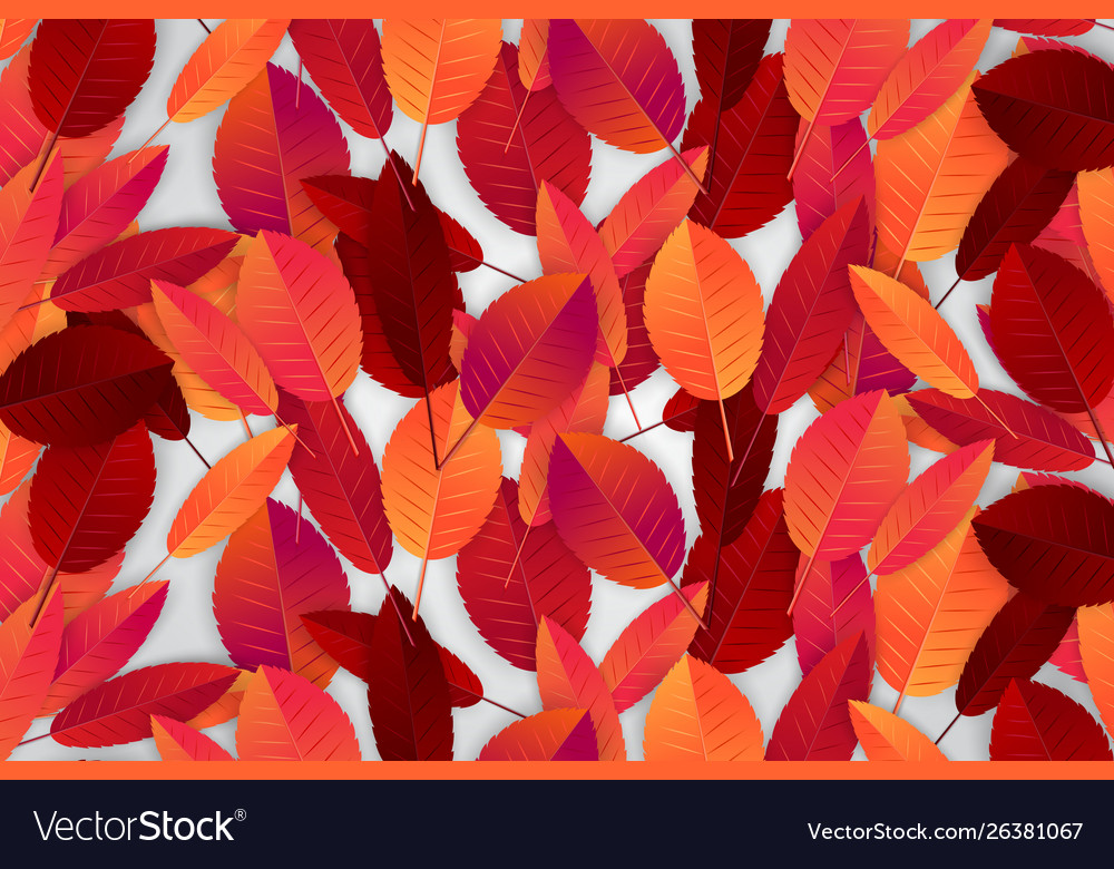 Autumn Leaves Background Wallpaper Fall Season