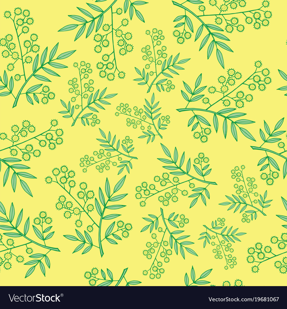 Mimosa branches seamless pattern cartoon and