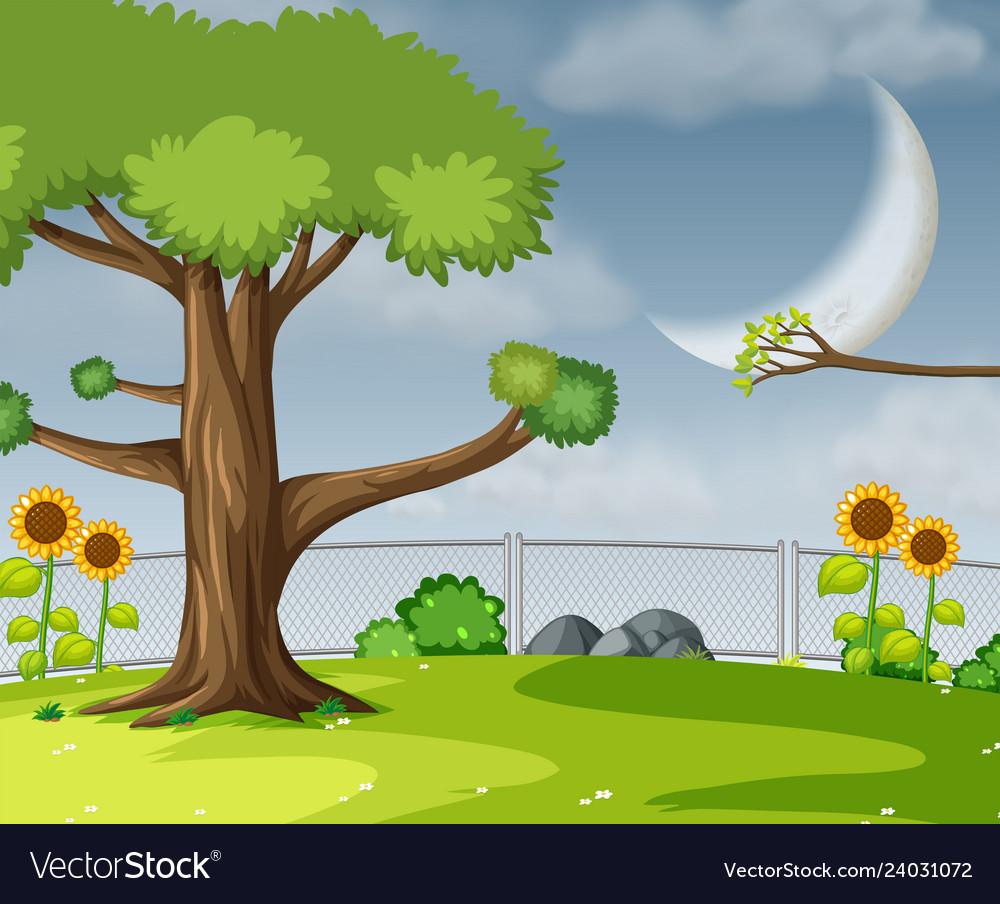 A flat garden scene