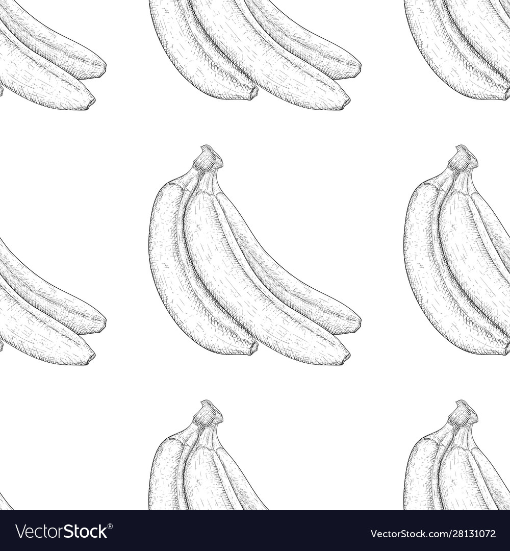 Bananas hand drawn black and white sketch as