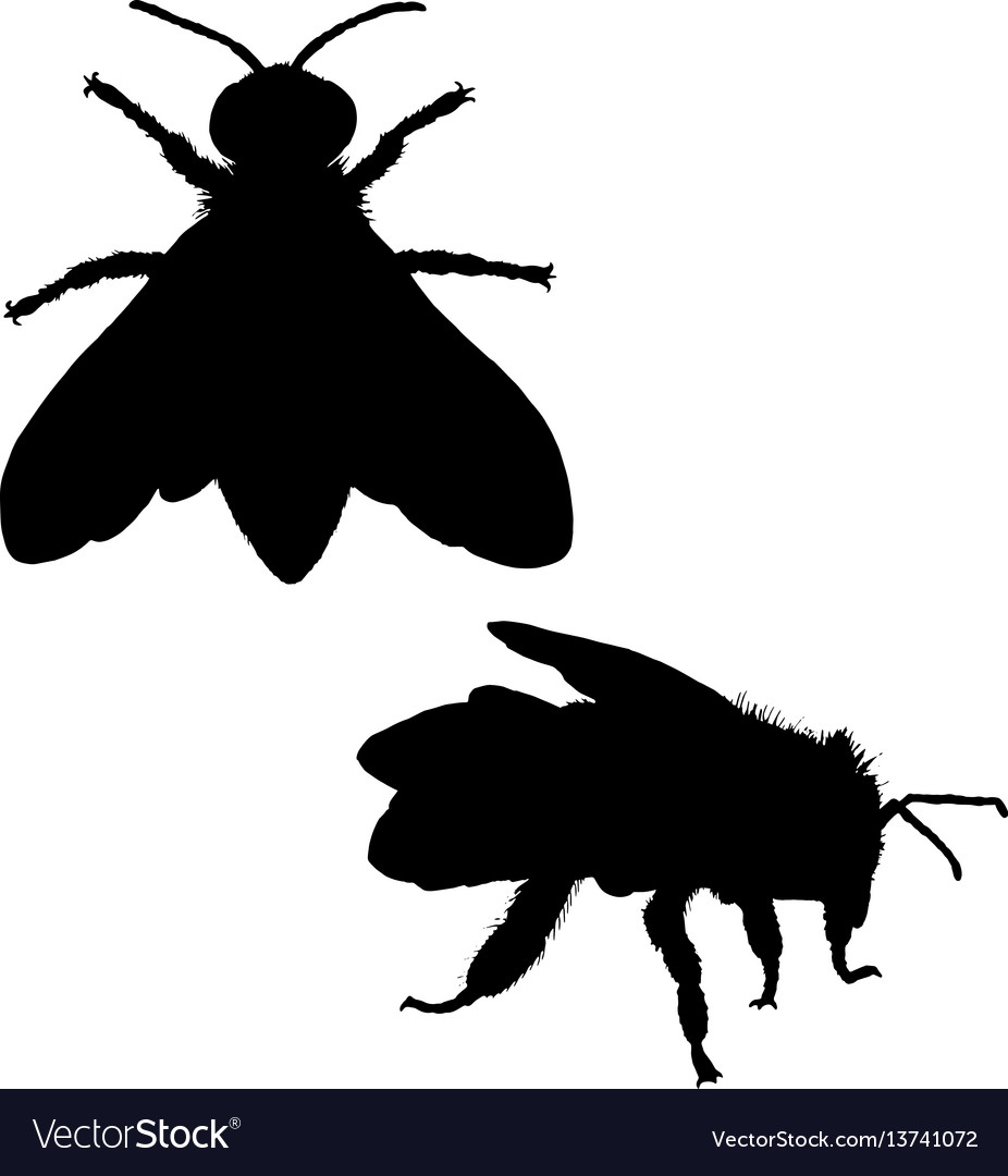 Bee silhouette black white icon