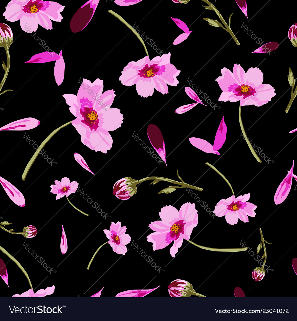 Cosmos Flowers On Black Background Flowers In Vector Image