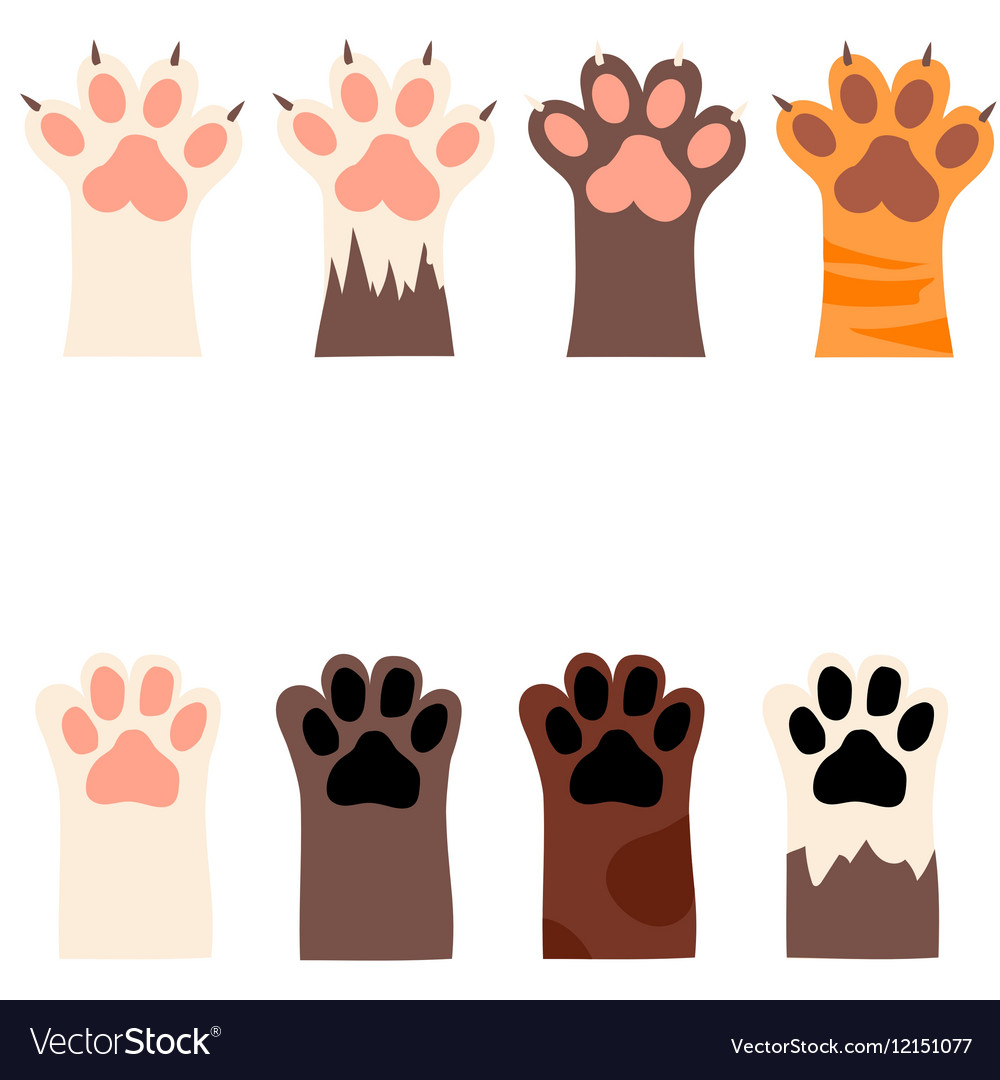 Cat Paw Print Vector Free
