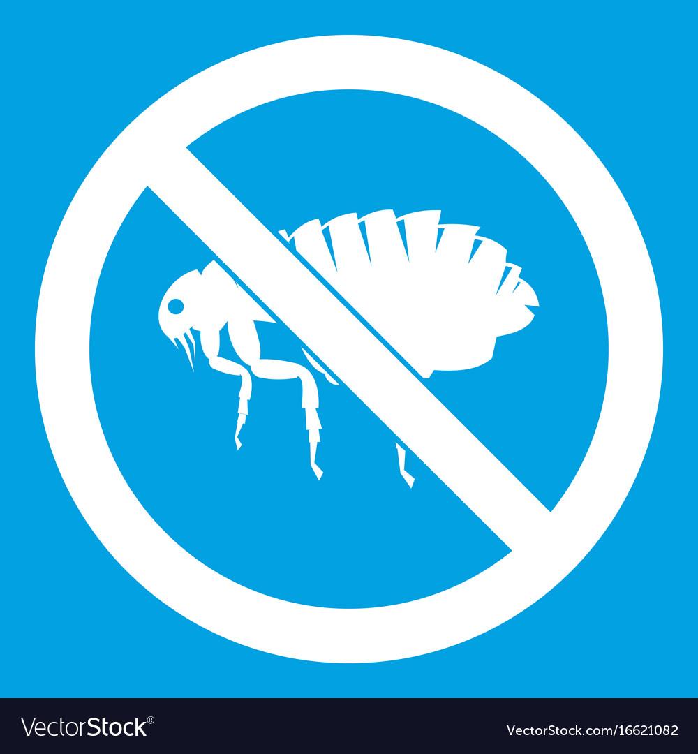 No flea sign icon white vector image
