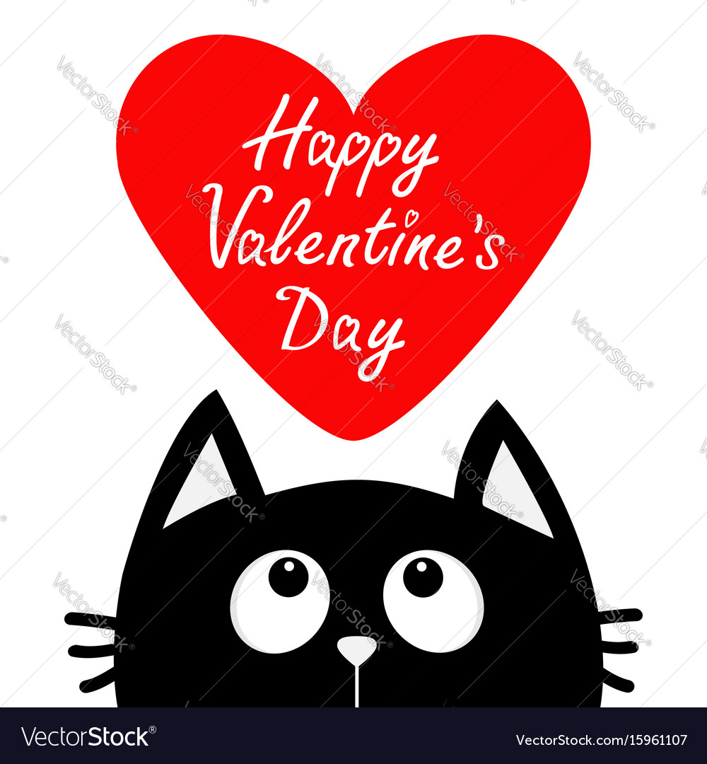 Happy valentines day black cat looking up to big