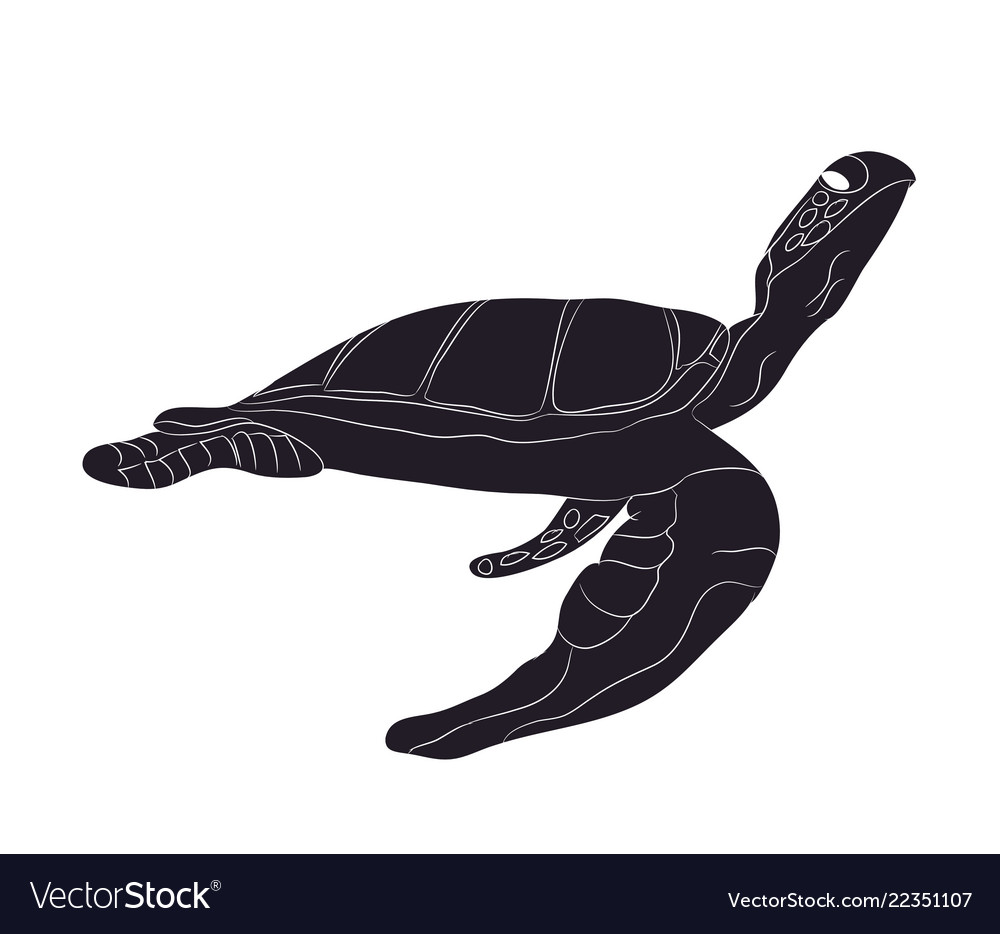 Turtle swim figure silhouette