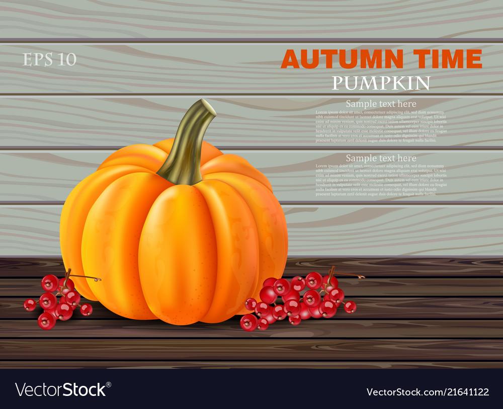 Autumn pumpkin realistic banner layout