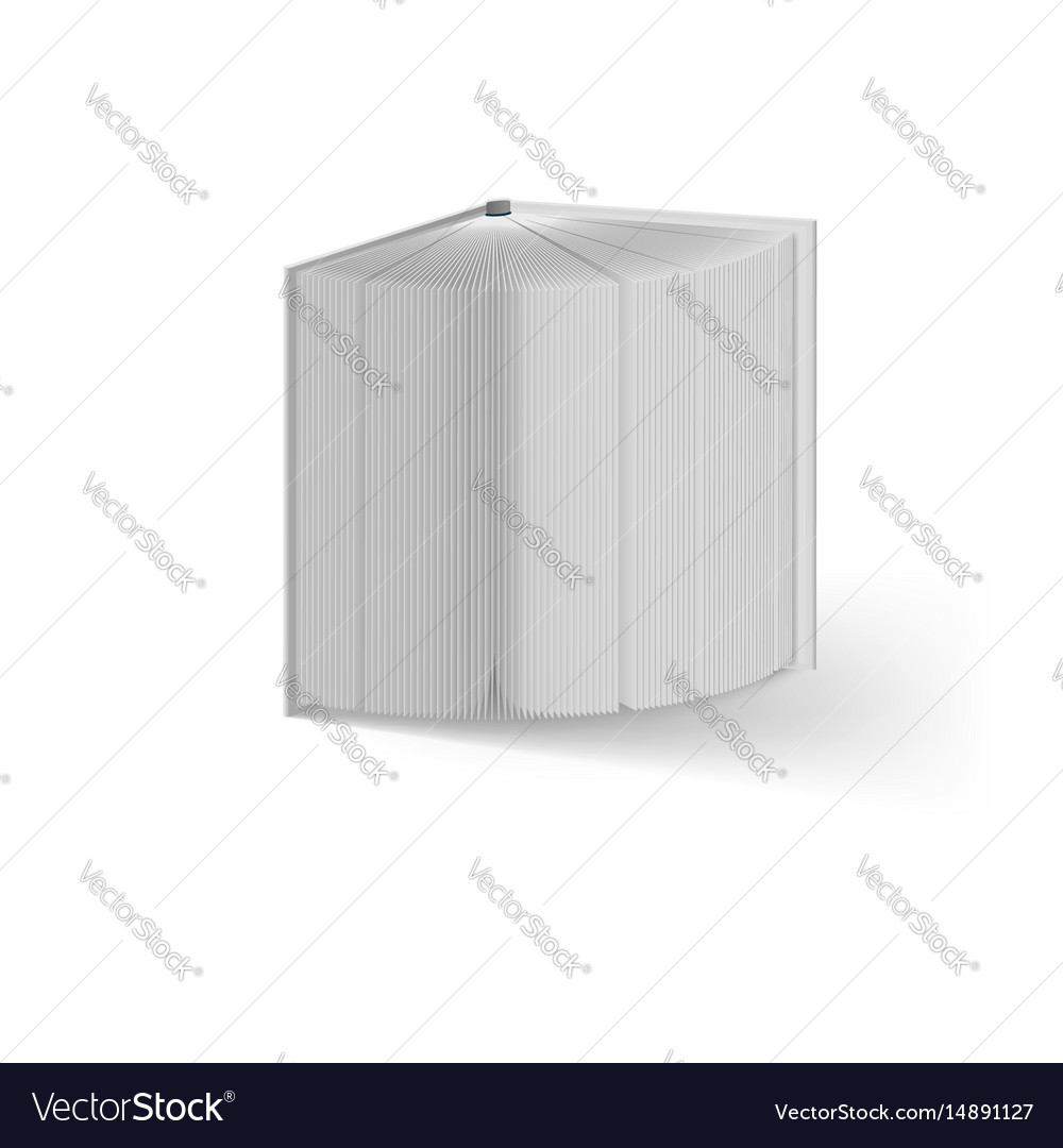 Open white book on white background mockup vector image