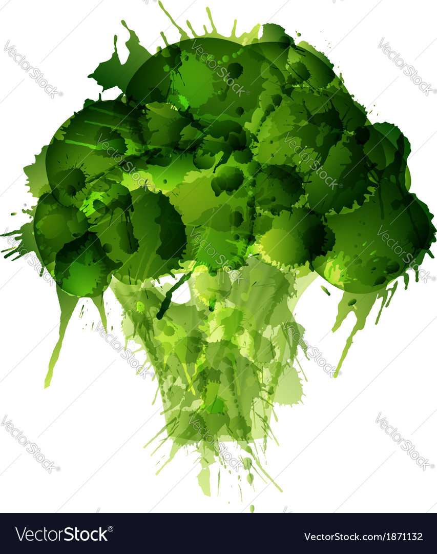 Broccoli made of colorful splashes on white backgr vector image