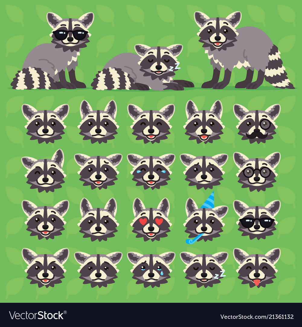 Cute raccoon in different poses and emotions