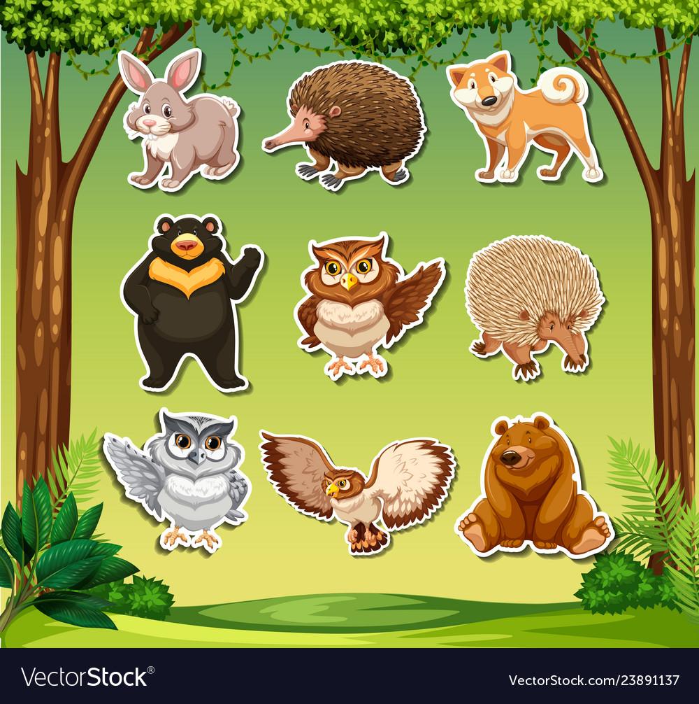 Wild animal sticker tehmplate