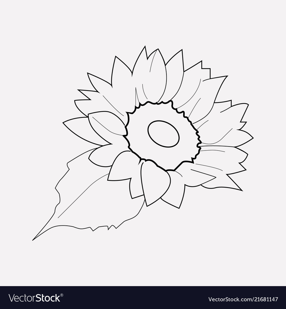 Sunflower icon line element