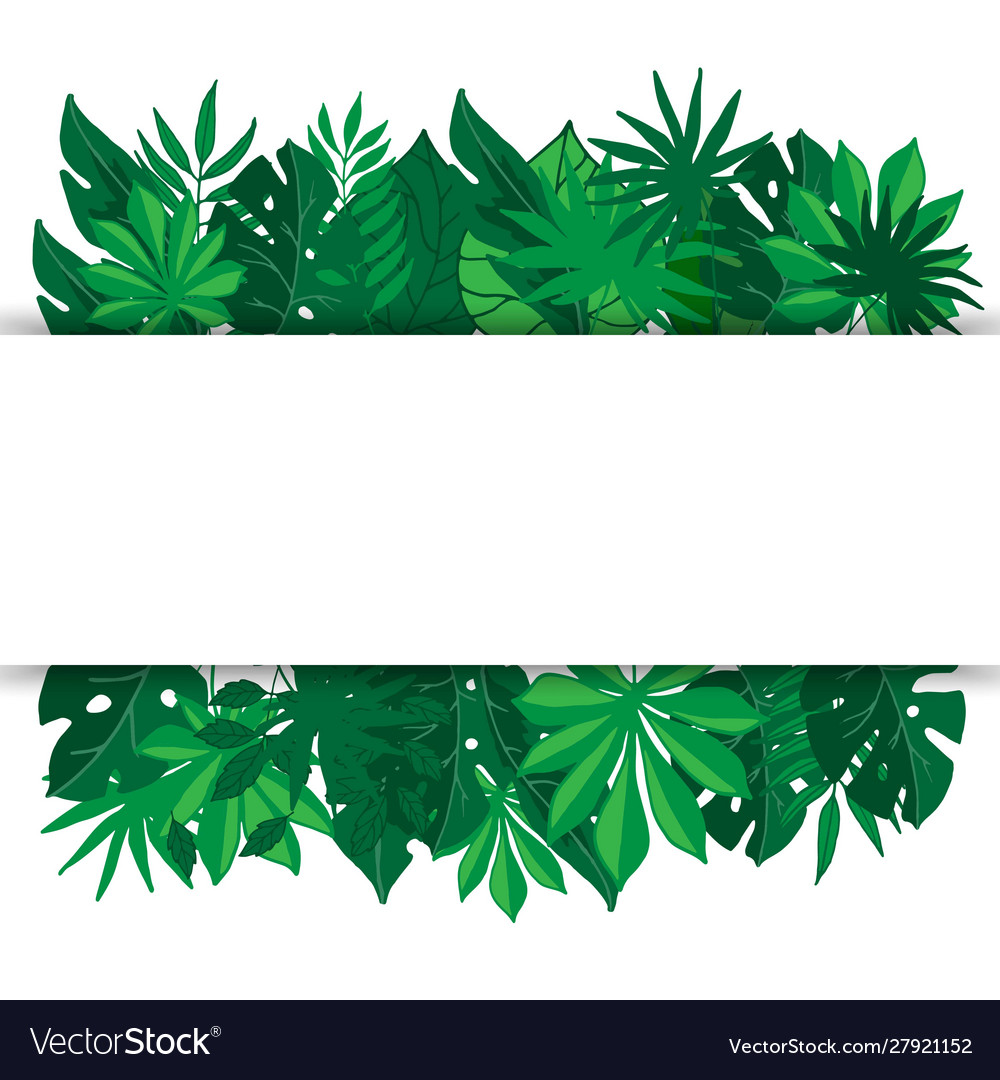 Tropical palm leaves banner