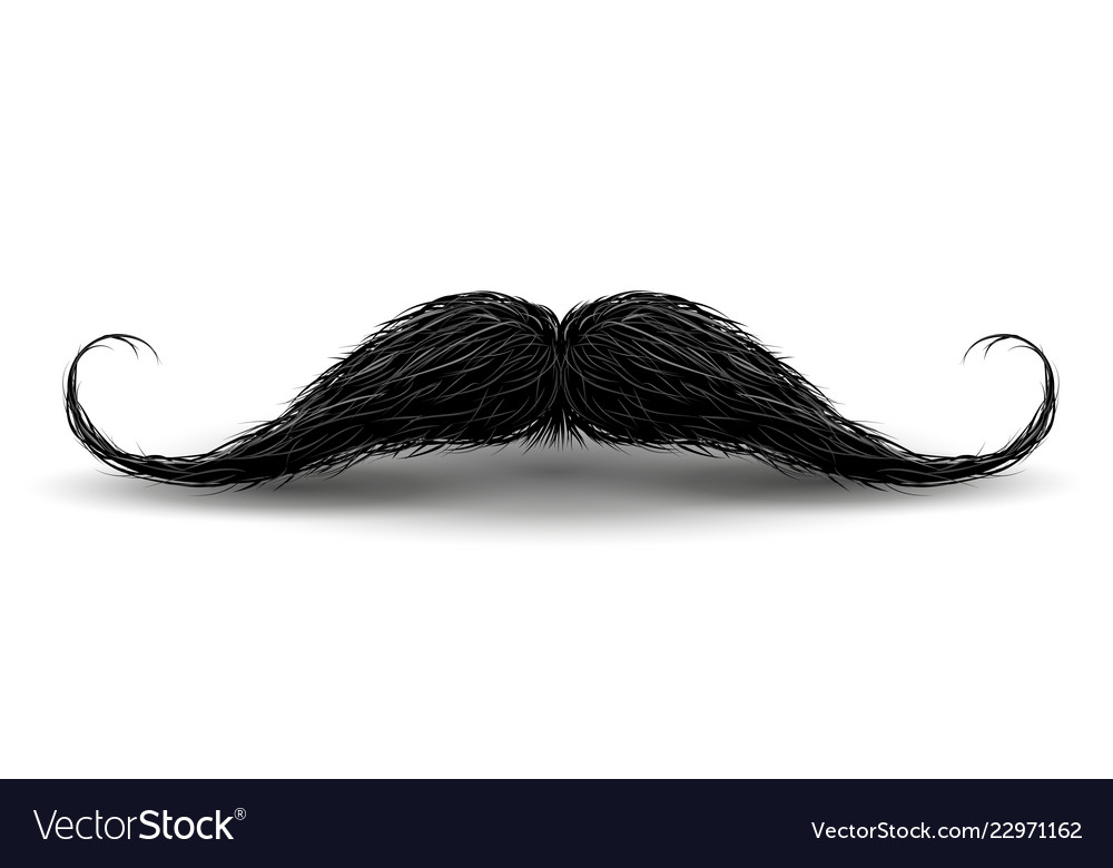 Realistic vintage black curly mustache