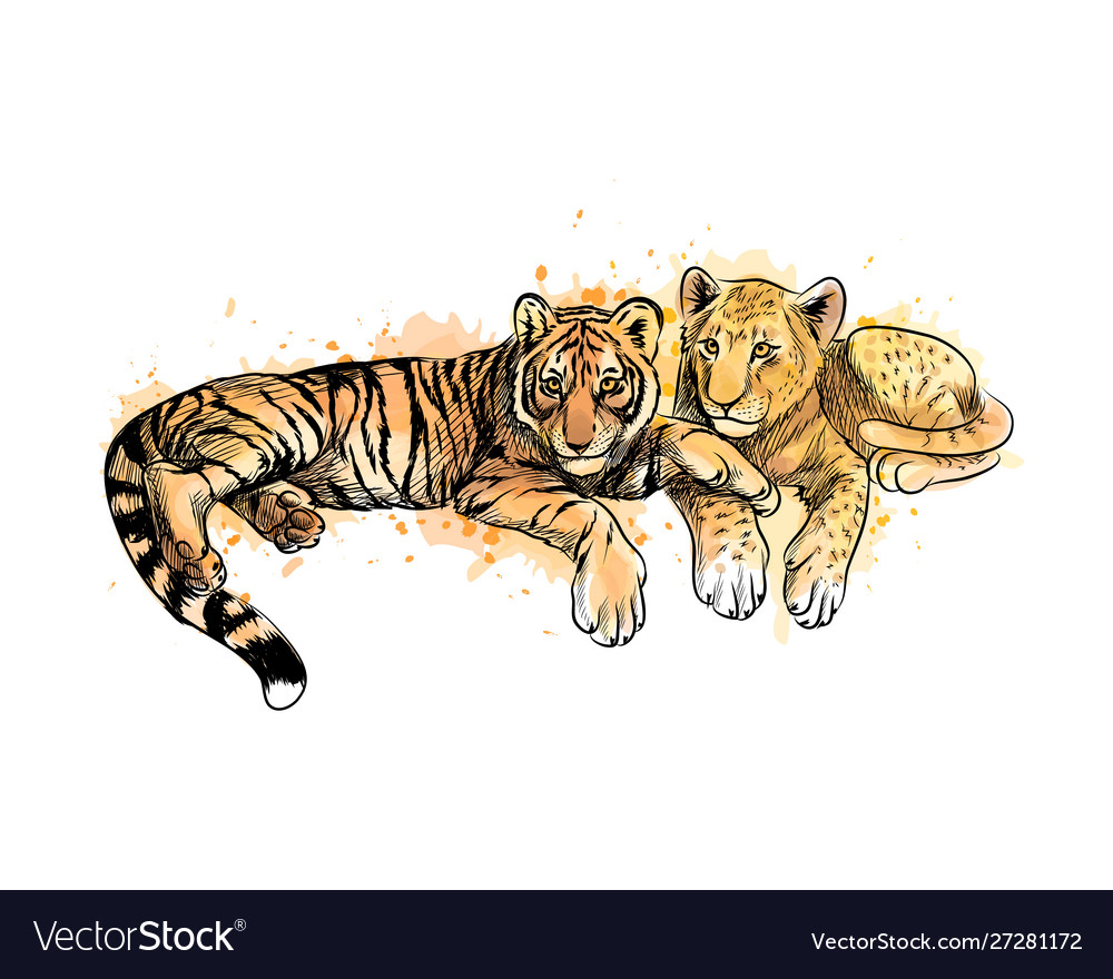 Lion cub and tiger cub from a splash watercolor