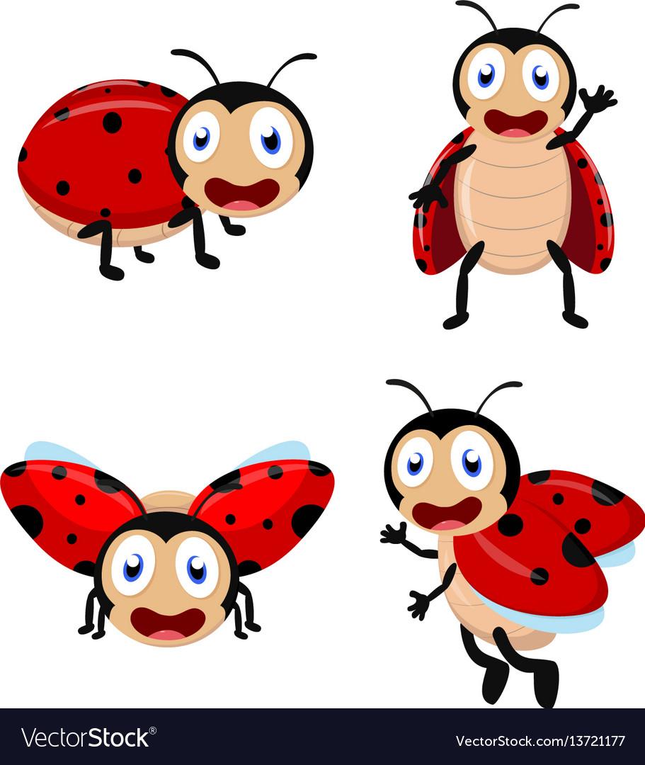 Cute ladybug cartoon cartoon collection set vector image
