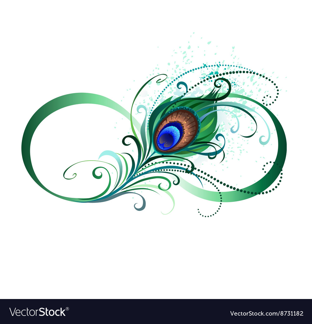 infinity symbol with peacock feather royalty free vector rh vectorstock com peacock vector free download peacock vector file