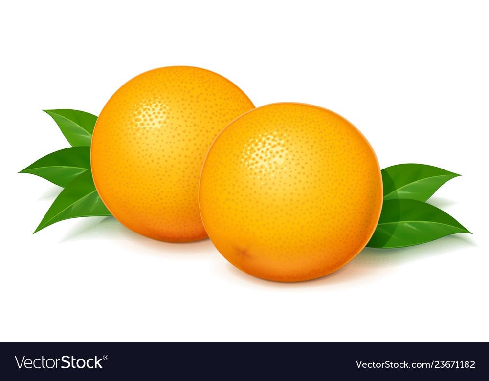 Ripe juicy orange with green