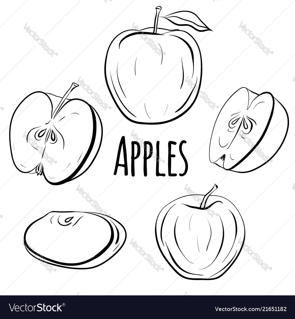 Set of apples of different shapes