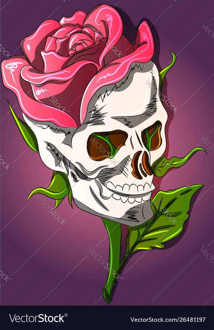 Skull and rose growing out it
