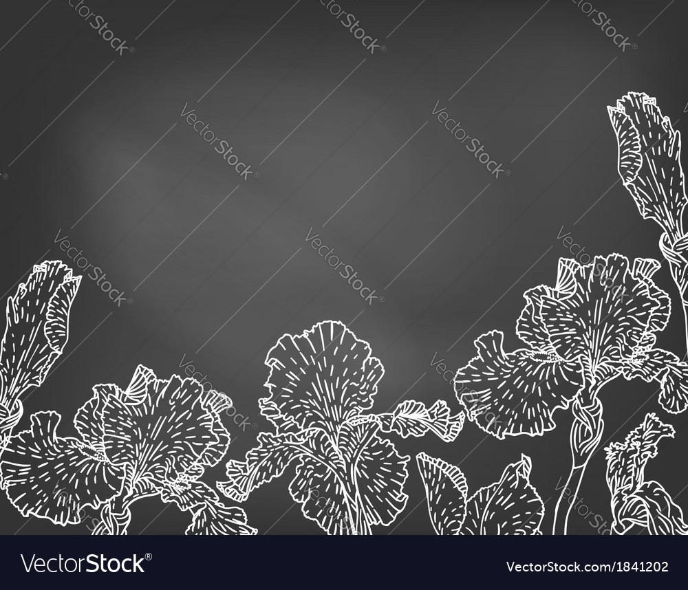 Card with hand drawn iris flowers on chalkboard vector image izmirmasajfo