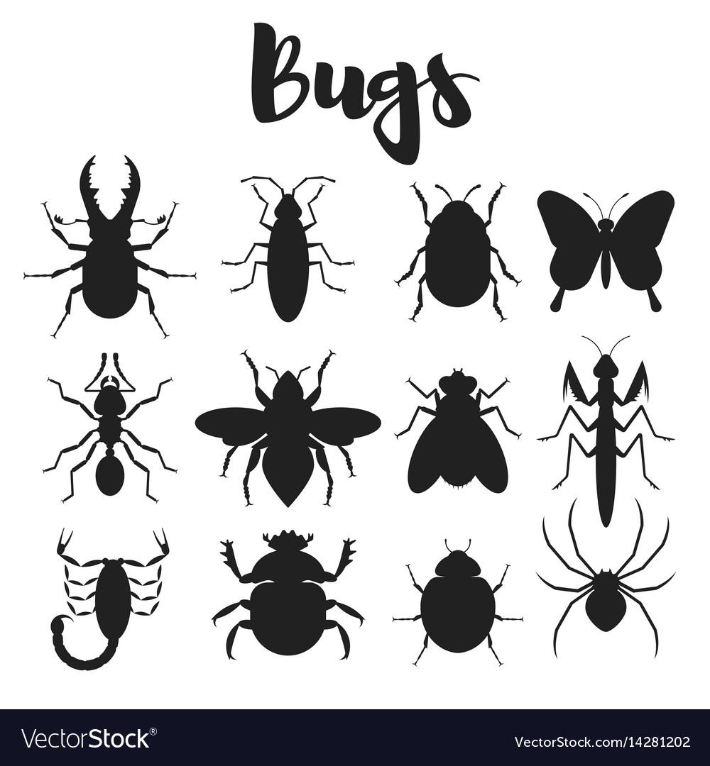Monochrome set of various bugs